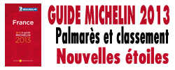 Michelin 2013